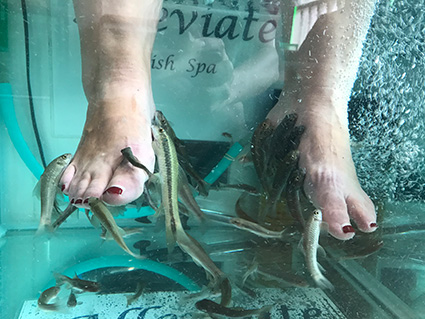 Singapur Alleviate Fish Spa