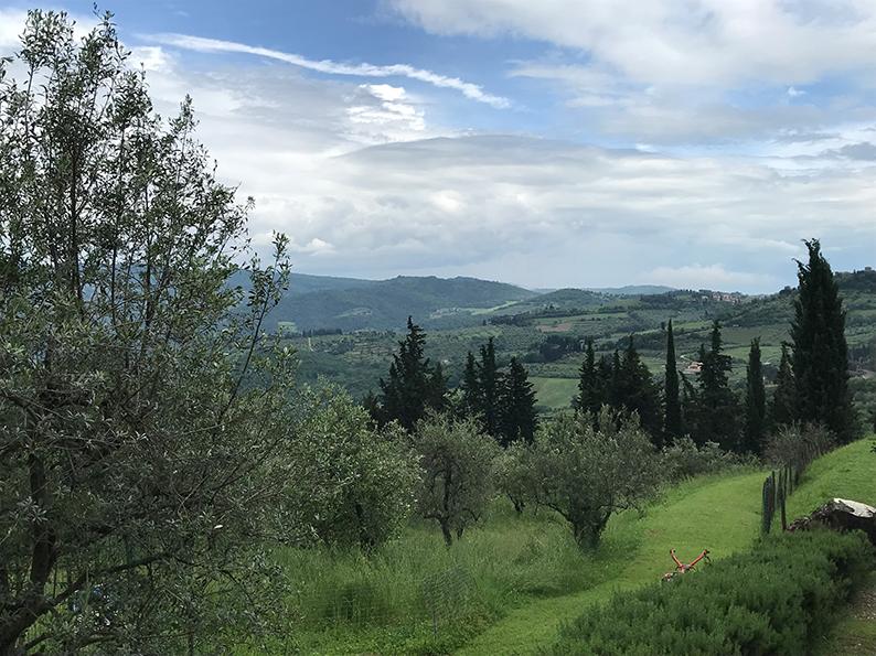 Florenz, Italien, Chianti Tour, Wine Tasting