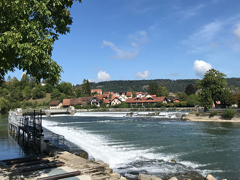 Foxtrail, Wasserschloss, Aargau, Gebenstorf, Windisch, Brugg, Schweiz