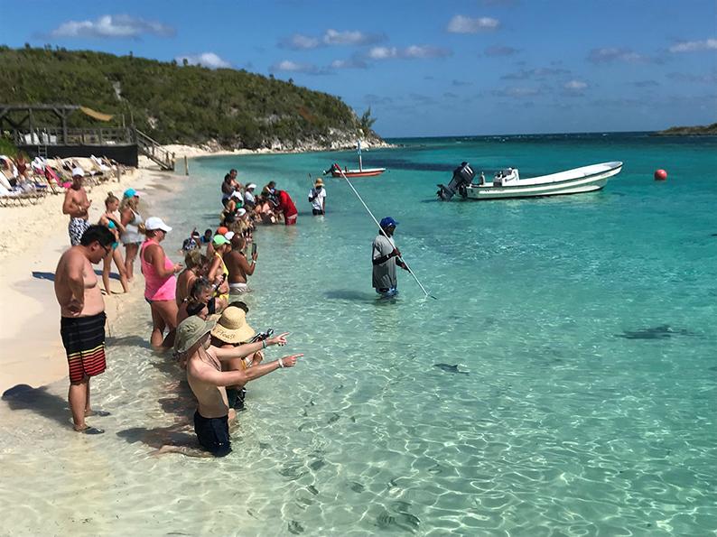 Bahamas, Power Boat Adventures, Rochen, schwimmende Schweine, Ship Channel Cay, Allen's Cay