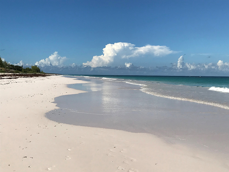 Bahamas, Eleuthera, Harbour Island, Pink Sand Beach