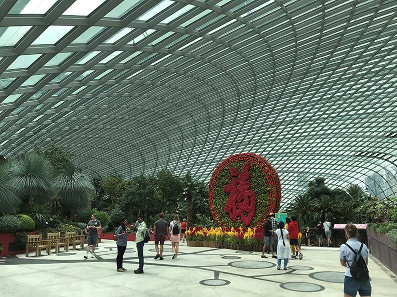 Singapur, Insta Hot Spot, Gardens by the bay, Flower Dome