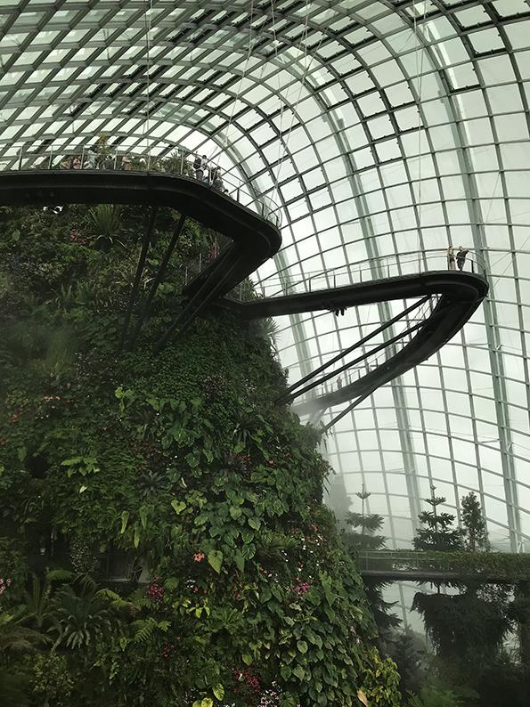 Singapur, Insta Hot Spot, Gardens by the bay, Cloud Forest