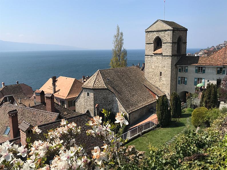 Lavaux, Genfersee, Weinberge, Waadt, Saint-Saphorin