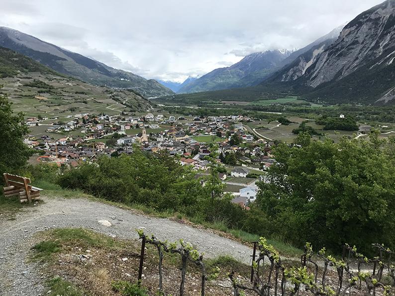 Sierre, Siders, Salgesch, Wallis, Schweiz, Rebwanderung